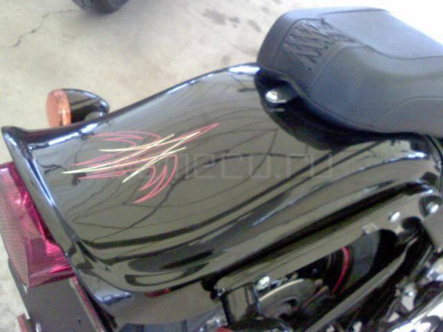 Harley-Davidson FLSTSB Softail Cross Bones (9)