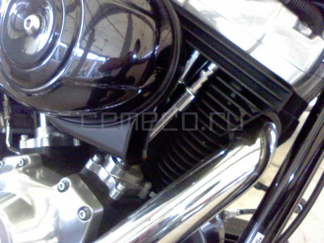 Harley-Davidson FLSTSB Softail Cross Bones (3)