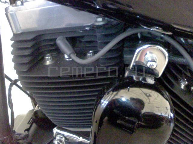 Harley-Davidson FLSTSB Softail Cross Bones (2)