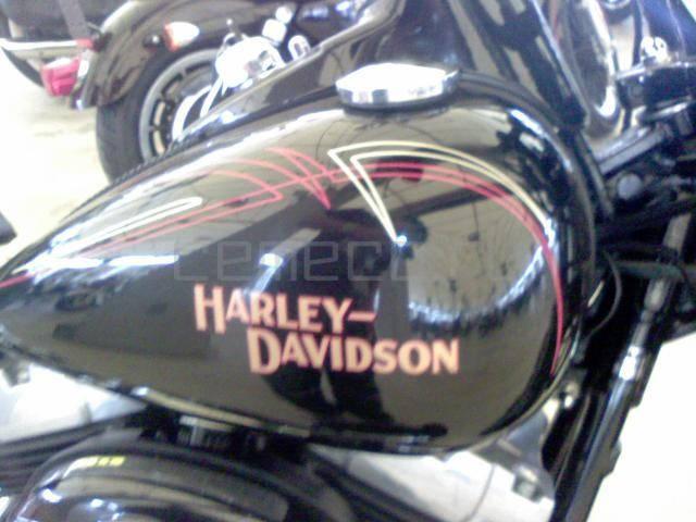 Harley-Davidson FLSTSB Softail Cross Bones (7)