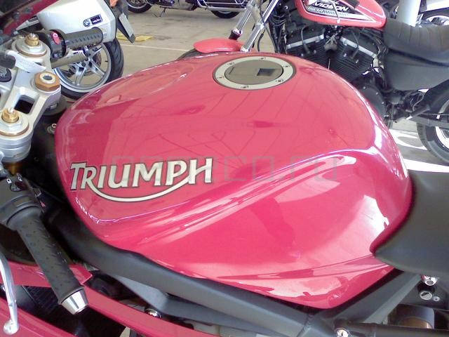 Triumph Daytona 675 R (8)