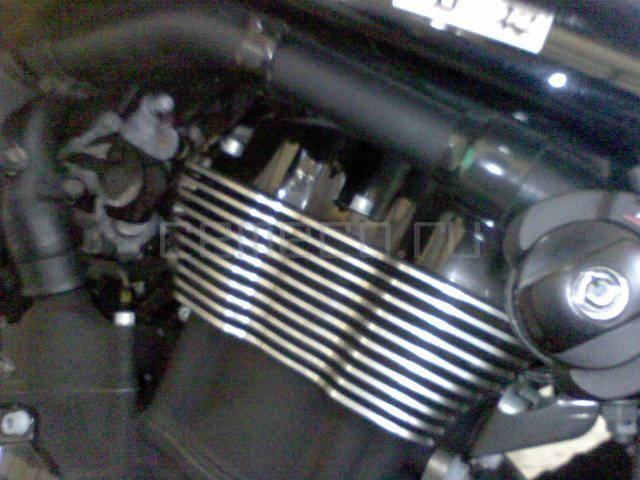 Harley-Davidson Night Rod (2)