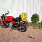 Ducati GT 1000 2008г. (2820km)
