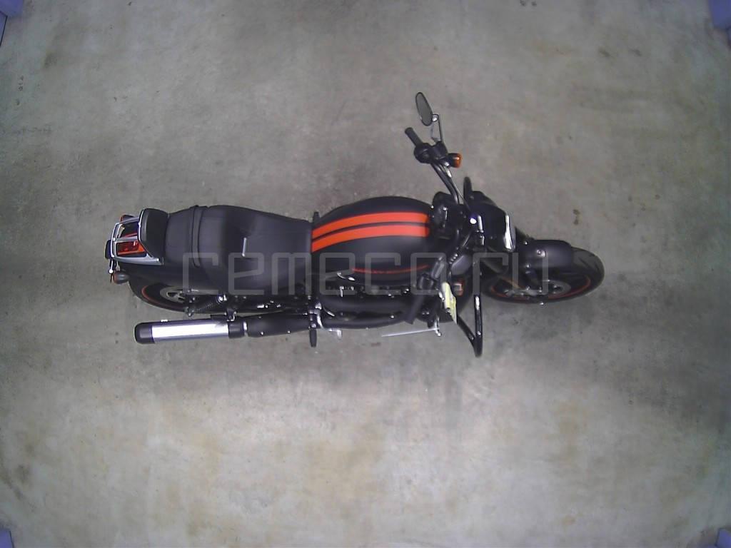 Harley-Davidson Night Rod Special VRSCDX (3)