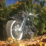 Harley-Davidson FLSTN Softail Deluxe (2)