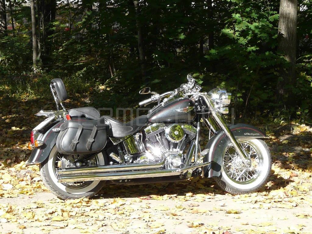 Harley-Davidson FLSTN Softail Deluxe (4)