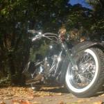 Harley-Davidson FLSTN Softail Deluxe (1)