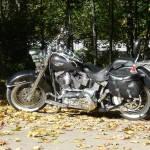 Harley-Davidson FLSTN Softail Deluxe (6)