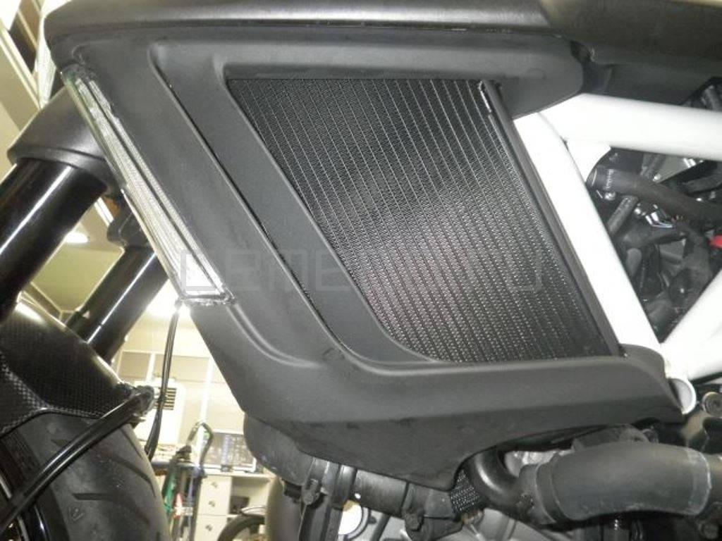 Ducati Diavel Carbon White 2014 (11)