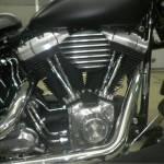 Harley-Davidson FLSTSB1580  (7)