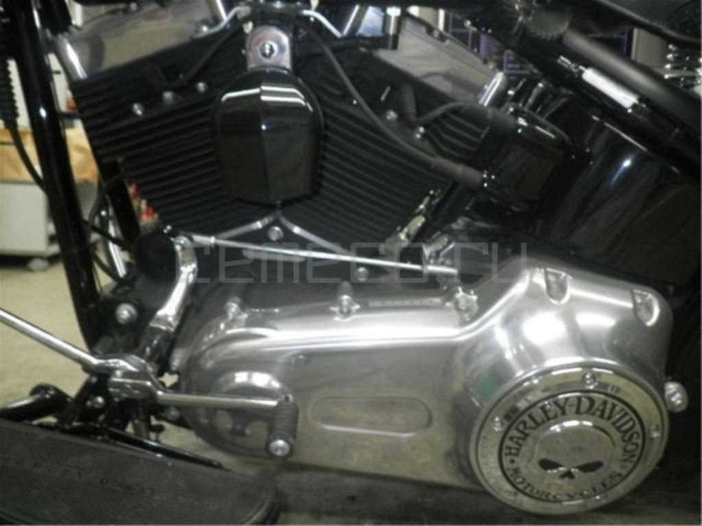 Harley-Davidson FLSTSB1580 (8)