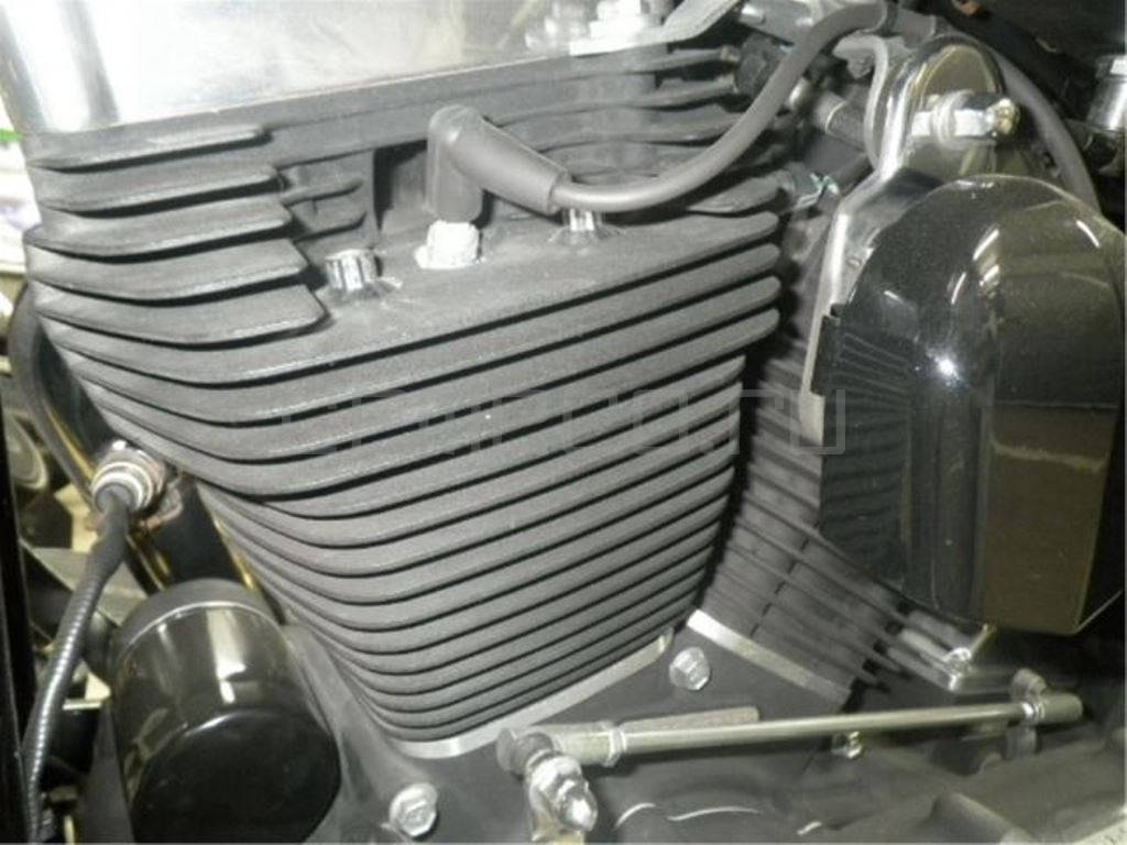 Harley-Davidson FLSTSB1580 (9)