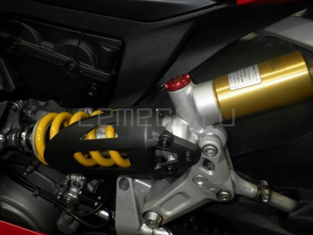 Ducati 1299 Panigale 2015 (19)