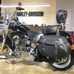 Harley-Davidson HARLEY FLSTC 3 (3)