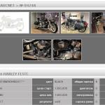 Harley-Davidson HARLEY FLSTC 3 (5)