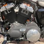 Harley-Davidson HARLEY XL1200X 8533 (10)