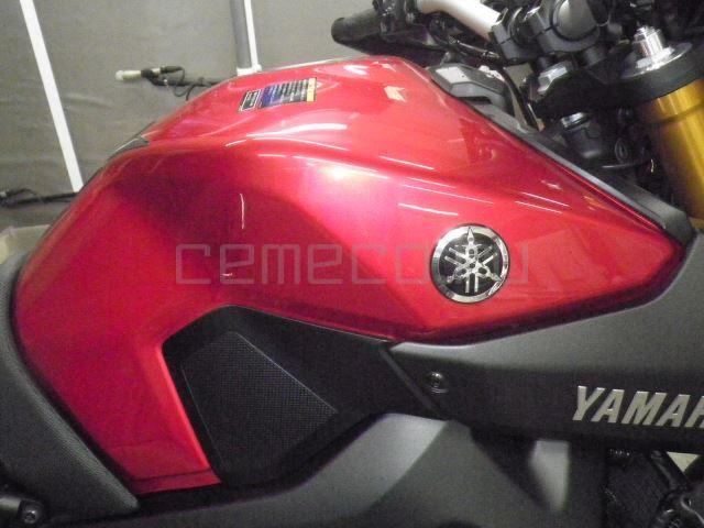 Yamaha MT-09 2770 (18)