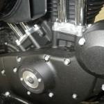 Harley-Davidson HARLEY XL883N 200 (10)
