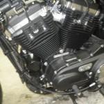 Harley-Davidson HARLEY XL883N 200 (11)