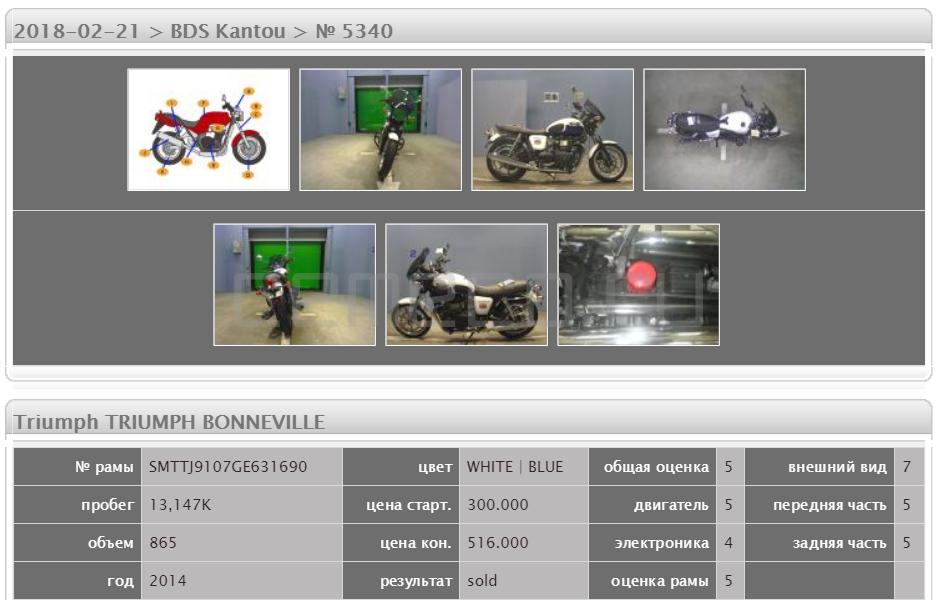 Triumph BONNEVILLE 13147 (5)