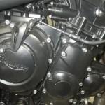Triumph TIGER 800XC 10307 (10)