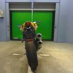 Ducati STREETFIGHTER 848 10849 (6)