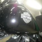Harley-Davidson HARLEY FLS1580 1833 (17)