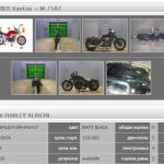 Harley-Davidson HARLEY XL883N 24845 (5)
